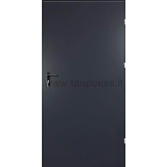 Metalinės vidaus durys (antracitas)